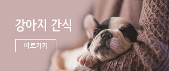하단 바로가기))  강아지간식