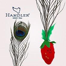 핸들러 깃털베지터블 딸기